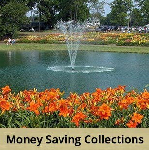 Money Saving Collections