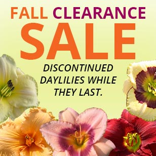 Oakes-Fall-Clearance-Sale-080415